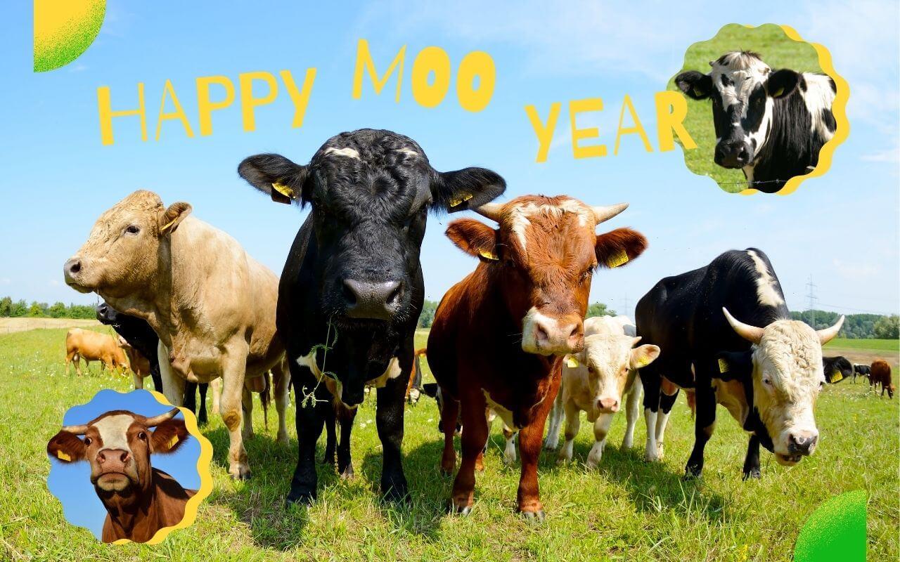 サンクス新年のご挨拶2021年